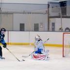Hockey-Fotos